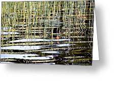 Fishy Fishy In The Lake ... Greeting Card