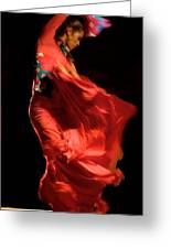 Flamenco Greeting Card by Tim Kahane