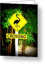 Flamingo Crossing Greeting Card