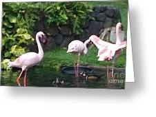 Flamingo Party Greeting Card by Silvie Kendall
