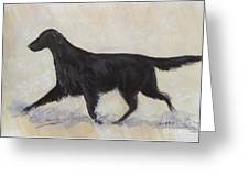 Flatcoat Retriever Greeting Card