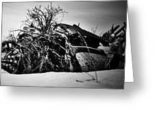 Flee Of Debris Two Greeting Card