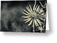 Fleur Jaune Greeting Card