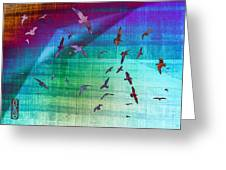 Flock Of Seagulls Greeting Card