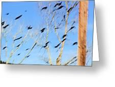 Flocking Crows Greeting Card