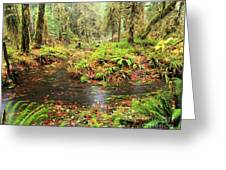 Flood In The Forest Greeting Card