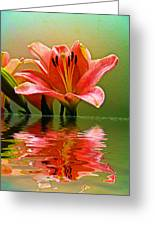 Flooded Lily Greeting Card