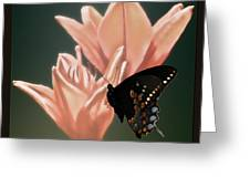 Floral Butterfly Dance Greeting Card