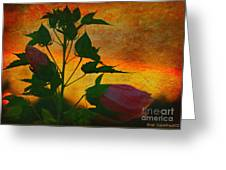 Floral Contrast Greeting Card
