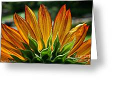 Floral Flaming Fingers Greeting Card