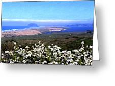 Flores De Los Osos Greeting Card