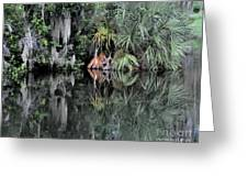 Florida Bayou Greeting Card