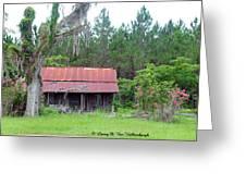 Florida Bunk House Greeting Card