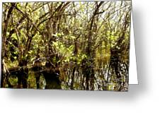 Florida Everglades 9 Greeting Card