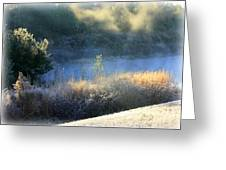 Florida Frosty Morning Greeting Card