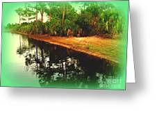Florida Landscape Greeting Card by Susanne Van Hulst