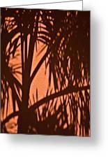 Florida Palm Shadow Greeting Card
