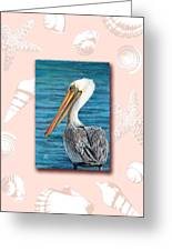 Florida Pelican With Seashell Border Greeting Card by Peggy Dreher