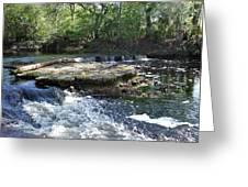 Florida Rapids Greeting Card