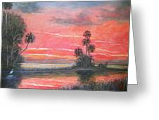 Florida River Scene Greeting Card