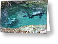 Florida Springs Cave Divers Greeting Card