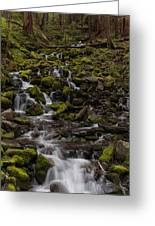 Flow Of Life Greeting Card