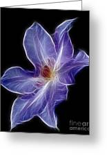 Flower - Clematis - Abstract Greeting Card