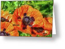Flower - Poppy - Orange Poppies  Greeting Card