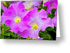 Flower 18 Greeting Card