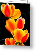 Flower 20 Greeting Card