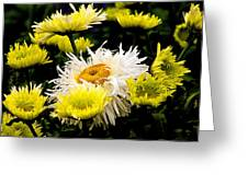 Flower 21 Greeting Card