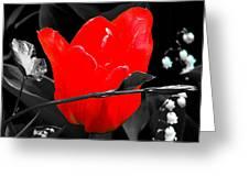 Flower 23 Greeting Card