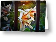 Flower 5 Greeting Card
