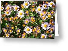 Flower Assault Greeting Card