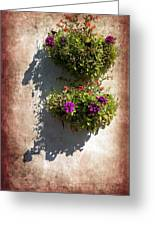 Flower Baskets Greeting Card