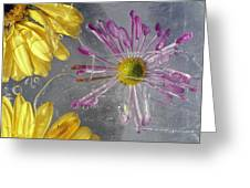 Flower Blossoms Under Ice Greeting Card