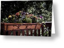 Flower Box Greeting Card