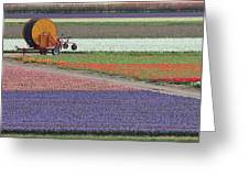 Flower Garden Greeting Card by Tia Anderson-Esguerra
