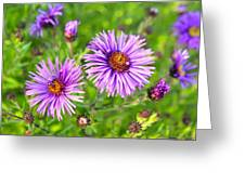 Flower Mania Greeting Card