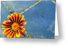 Flower On Water Greeting Card
