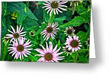Flower Patterns Greeting Card