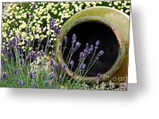Flower Pot 5 Greeting Card