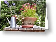 Flower Pot 6 Greeting Card