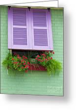 Flower Pot Window Greeting Card