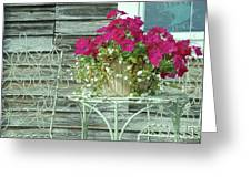 Flower Pots ...... 4 Greeting Card