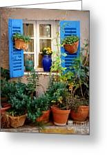 Flower Pots Galore Greeting Card