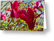 Flower-tree-the Tulip Tree Greeting Card