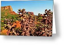 Flowering Cactus Framing The Sedona Landscape Greeting Card