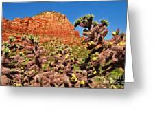 Flowering Desert Cactus Framing Red Rock Cliffs Greeting Card