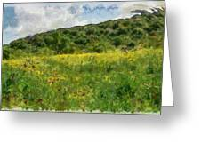 Flowering Fields Greeting Card